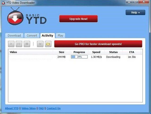 ytd-activity